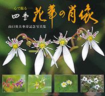 心で撮る四季 花華の肖像